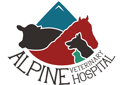 Alpine Veterinary Hospital Logo