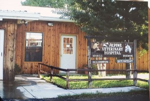 colorado veterinarian 6