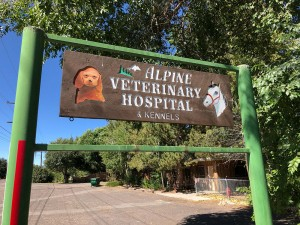 monte vista alpine vet hospital 1